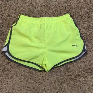 NWT Girls Puma athletic shorts. Size 8-10